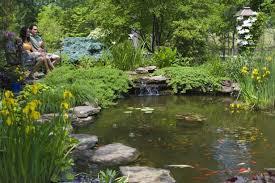 Backyard Garden Ponds Exterior Beautiful Backyard Landscapes Natural Fence For