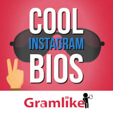 biography for instagram profile 500 good instagram bios quotes the best instagram bio ideas