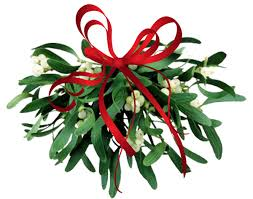musings on this that and the other thing mistletoe memories