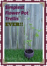 flower pot trellis 123 cute interior and simplest flower pot