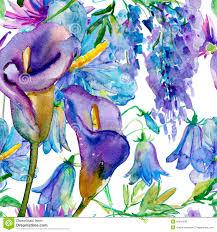 blue and purple flowers blue and purple flowers royalty free stock photos image 35901538