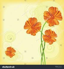 orange flowers california poppy circle ornaments stock vector