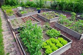 garten anlegen ideen kräutergarten gestalten 21 ideen für große und kleine gärten