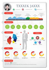 Resume Infographic Template Infographic Resume Visual Ly
