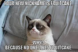 Fruitcake Meme - tuesday 27 12 2016 celebrating national fruitcake day the daily