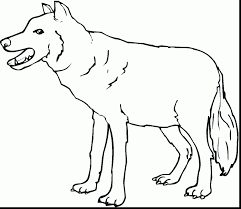 beautiful printable wolf coloring pages with wolf coloring pages