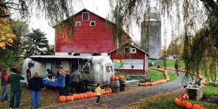 the best places to go apple picking near nyc business insider