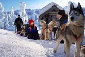scandinavian winter tours 50 degrees north