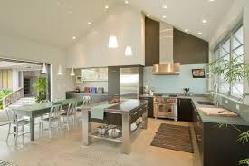 Aluminum Kitchen Cabinets Benjamin Moore Brushed Aluminum Kitchen Tropical With Kitchen Cabinets