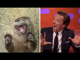 Benedict Cumberbatch Otter Meme - benedict cumberbatch vs an otter who imitate who youtube