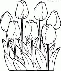 printable coloring pages flowers printable flower coloring pages flower coloring pages pinterest