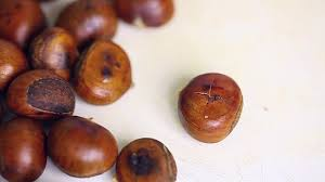 Roasting Chestnuts In Toaster Oven How To Roast Chestnuts Easily And Correctly Wikihow