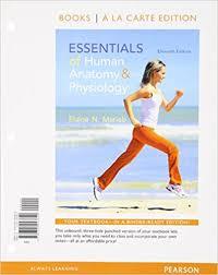 Human Anatomy And Physiology Marieb 7th Edition Essentials Human Anatomy Physiology Marieb Essentials Of Human