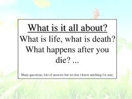what is it all about what is what is what happens after