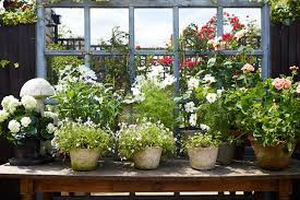 potted flowers flower garden ideas and designs outdoor spaces