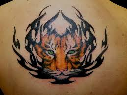 cool calf tattoos for 25 stunning tiger