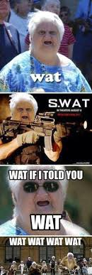 Old Lady Wat Meme - 66 funniest memes of all time guaranteed to make you laugh every