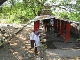 In Laws House by Tamilnadu Tourism Sathuragiri Hills U2013 Temples