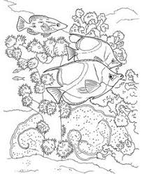 sea turtles coloring pages printable coloring pages pinterest