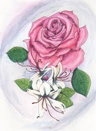 June Flowers - june birthday card june flowers rose u0026 honeysuckle by blazing
