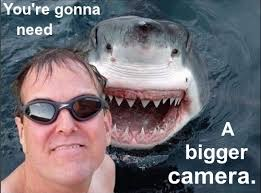 Jaws Meme - jaws applause meme anonamos3021