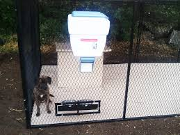 wall mounted dry food dispenser dog kennel feeders