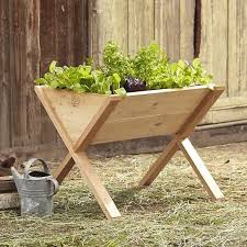 best 25 raising ideas on pinterest small outdoor herb garden