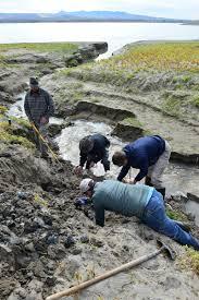 paleontology science springs 2