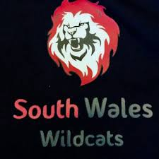 How Old Is The Welsh Flag South Wales Wildcats Swwilcats Twitter