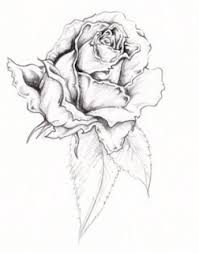 design flower rose drawing tattoo sexy beautiful art of tattoos design with image flower rose