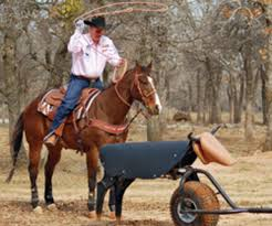 Jake Barnes Team Roping The Quickest Way To Catch Onto Roping Expert Advice On Horse
