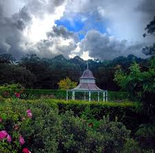 Botanical Garden Wollongong Botanic Garden Wollongong Australia Places I Ve Lived