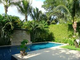 Concrete Ideas For Backyard stylish swimming pool design with concrete patio for amazing