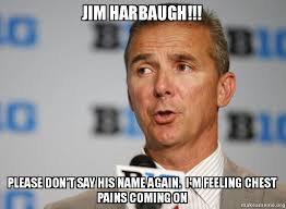 Jim Harbaugh Memes - jim harbaugh please don t say his name again i m feeling chest