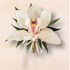 white orchid corsage easter corsage naples easter flowers