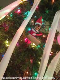 easy the on the shelf ideas toilet papers the tree