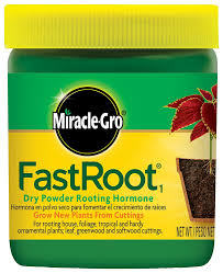 amazon com miracle gro fastroot dry powder rooting hormone jar