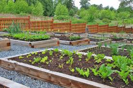 to make the most of a small garden plot
