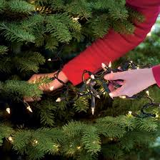 how to put lights on a christmas tree video tips on how to put lights on a christmas tree