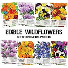 wildflower seed packets flower seed packet