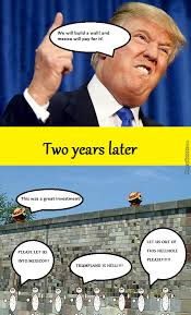 Meme Wall - mexico should totally build trumps wall by zortesh meme center