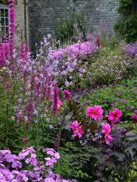 best 25 english cottage gardens ideas on pinterest cottage
