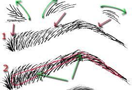 comic art reference u2013 basic eyebrow