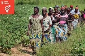 goal 5 gender equality undp
