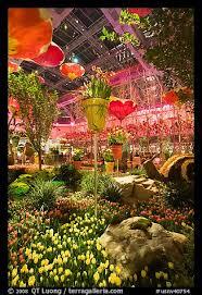 Botanical Gardens In Las Vegas Picture Photo Botanical Gardens Inside Bellagio Hotel Las Vegas
