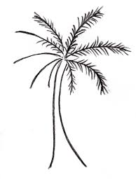 palm tree easy drawing drawing sketch picture