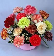 carnation flowers jelly bean carnation bowl kremp