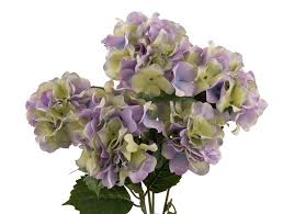 silk hydrangea purple and green silk hydrangea silk wedding flowers