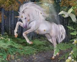 unicorn wallpaper hd android apps on google play