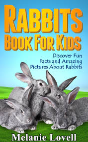 cheap good rabbits for kids find good rabbits for kids deals on